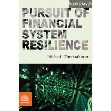 Pursuit of Financial System Resilience